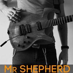 Mr Shepherd